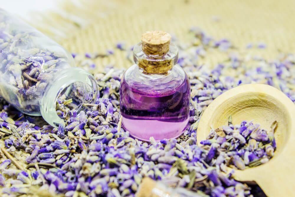 Olio di lavanda: preparazione e usi