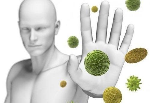 Il nostro sistema immunitario