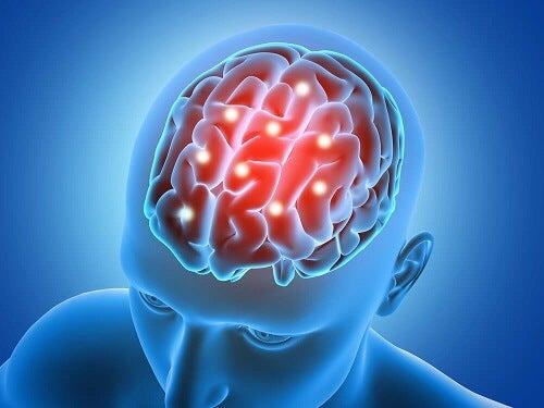 cervello attivo