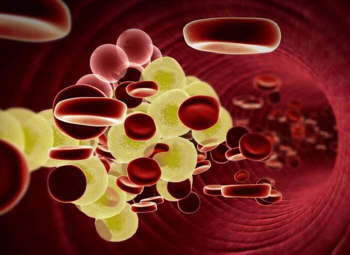 Coriandolo e colesterolo