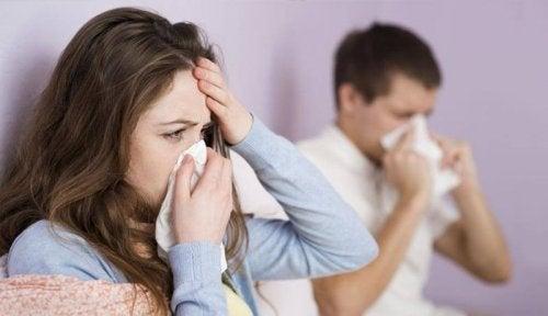 Coriandolo e influenza