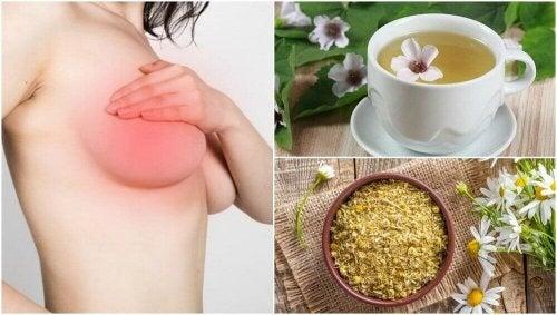 5 rimedi di origine naturale per calmare il dolore al seno