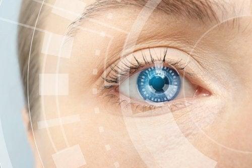 Fisiologia della vista cromatica