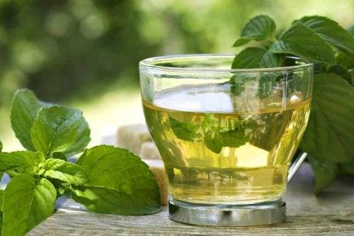 Té verde e menta