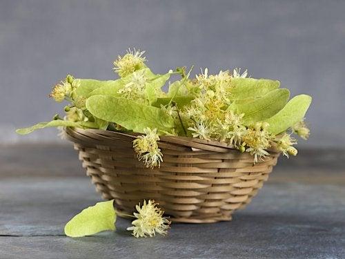 cestino con foglie di tè