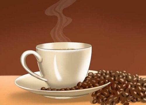 Curiosità sul caffè: origine e aneddoti
