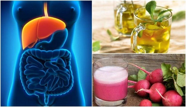Trattare il fegato grasso in modo naturale