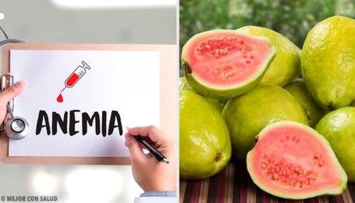 La guava: caratteristiche e usi