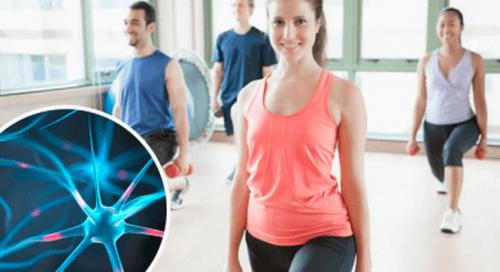 6 abitudini raccomandabili per rigenerare i neuroni