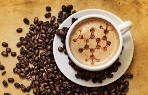 Alimenti caffè