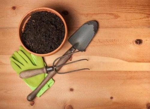 attrezzi per coltivare piante