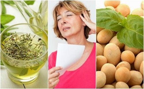 Effetti della menopausa: 5 prodotti naturali