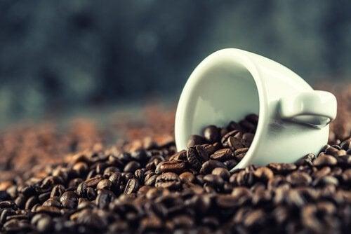 Fonte caffeina