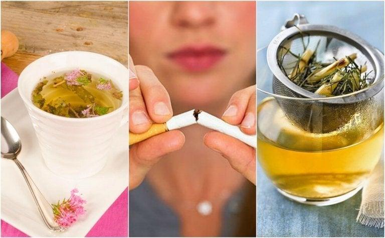Ansia da nicotina: tisane per ridurla