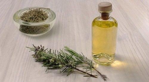 Olio e rametti di rosmarino