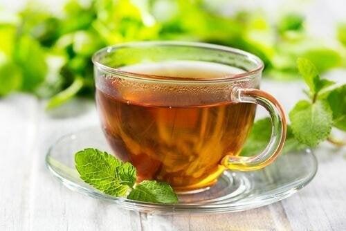 tazza di infuso al mentastro verde