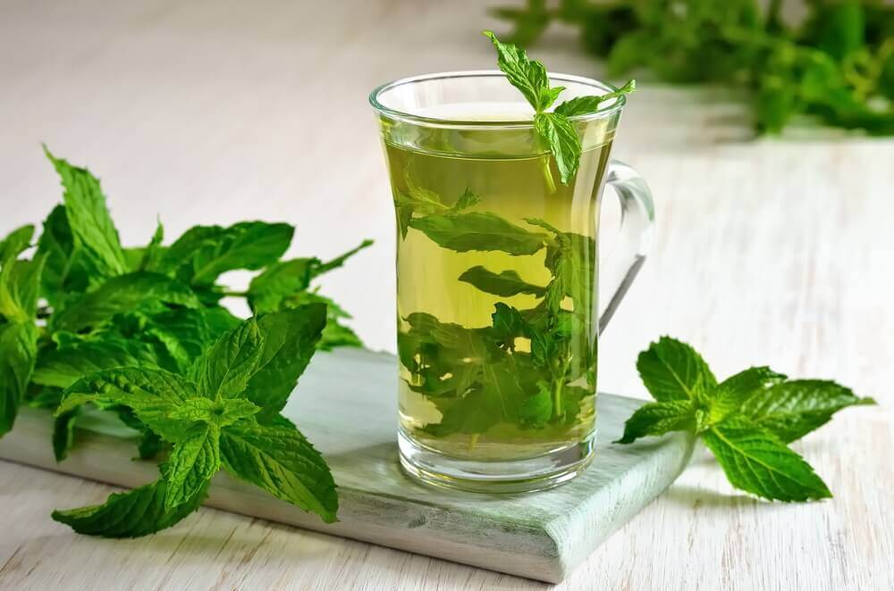 Tè alla menta: molteplici benefici per la salute