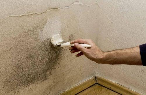 Umidità in casa: 5 modi per eliminarla