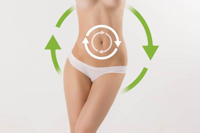 Velocizzare il metabolismo, uno dei modi migliori per perdere peso