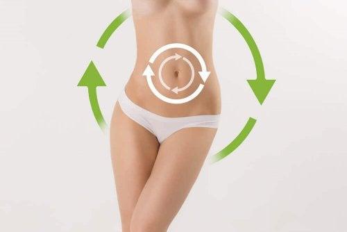 Accelerare il metabolismo, il modo per perdere peso