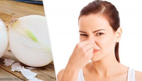 8 alimenti che provocano cattivo odore corporeo