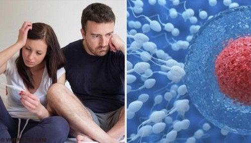 Aumentare la fertilità maschile: abitudini corrette