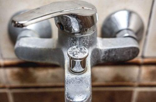 Rimedi naturali per eliminare il calcare in bagno vivere pi sani - Rimedi naturali per andare in bagno ...