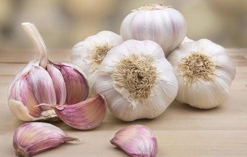 teste e spicchi d'aglio
