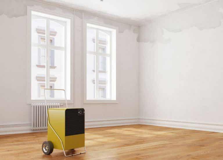 Deumidificatore in casa: perché è importante?