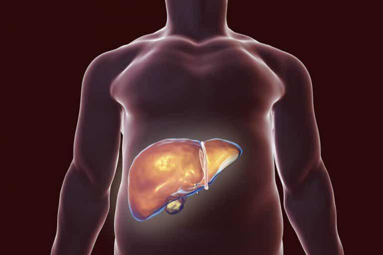 I migliori rimedi naturali per disintossicare il fegato