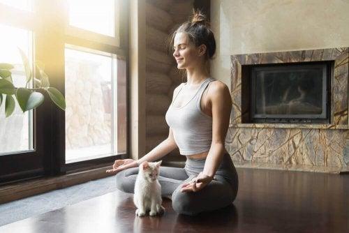 Ragazza realizza esercizi di yoga con gatto