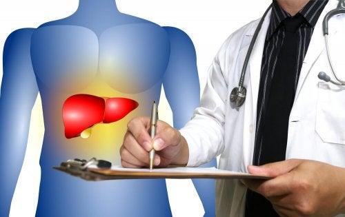 Rimedi naturali per il fegato ingrossato