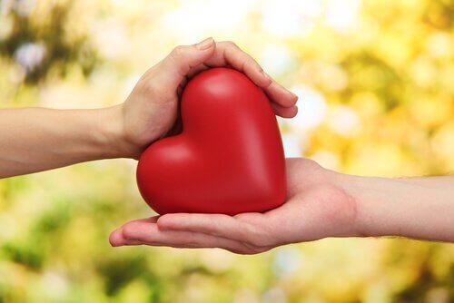 due mani con un cuore finto