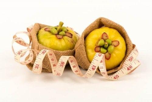 Perdere peso in modo naturale con la Garcinia Cambogia
