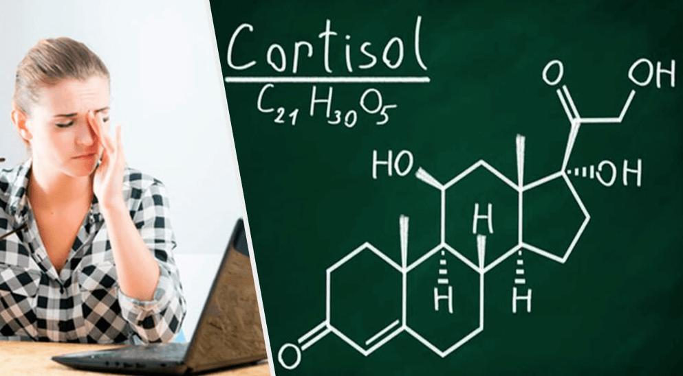 Cortisolo alto: cause e rimedi naturali