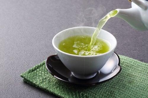 Fucus tè