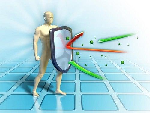 Rafforzare le difese immunitarie con l'alimentazione