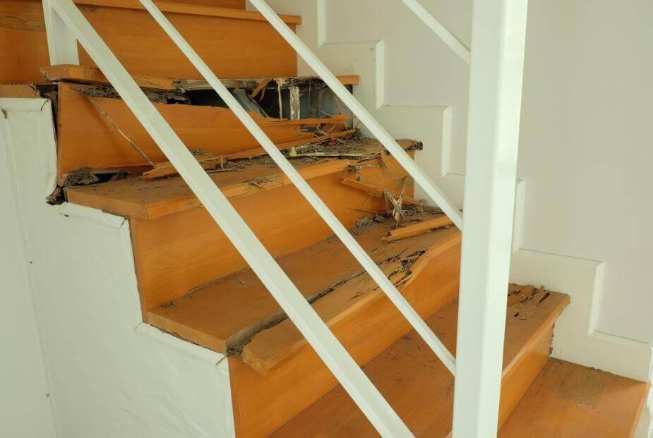 Come eliminare le termiti dalla casa