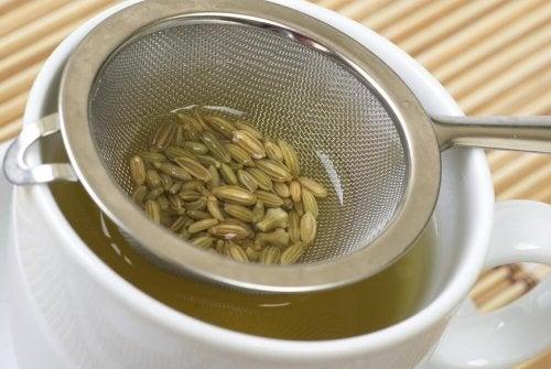 l'infuso ai semi di finocchio è ottimo per disintossicare il colon