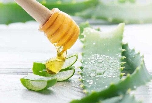 Succo di aloe e miele.