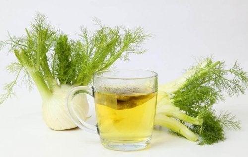 La tisana al finocchio favorisce la digestione e l'assimilazione dei nutrienti