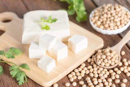 Tofu soia fonte proteica per vegani