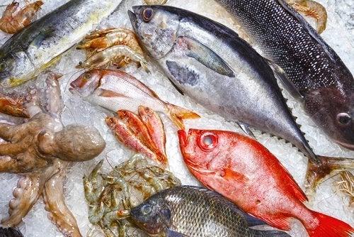 Vari tipi di pesce