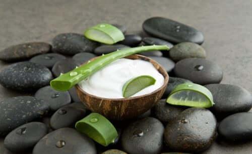 Aloe vera e olio di cocco