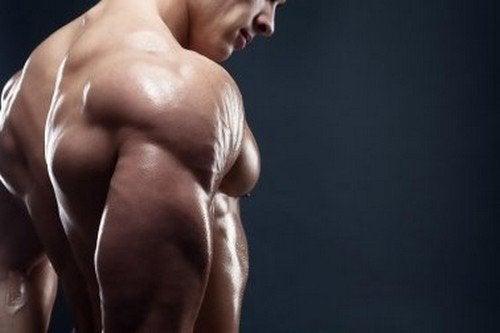 super dieta per aumentare la massa muscolare nelle donne
