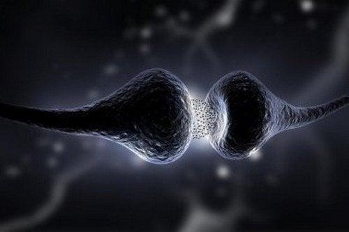 Dieta della serotonina: scoprite di cosa si tratta