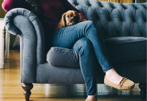 Donna seduta con jeans e cagnolino
