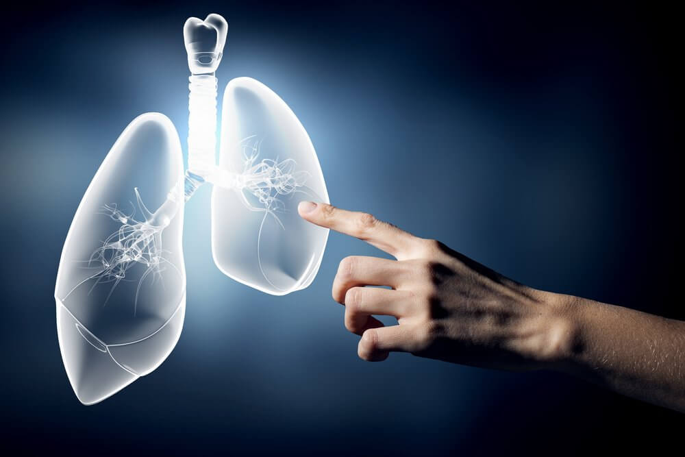 Mano che indica polmone