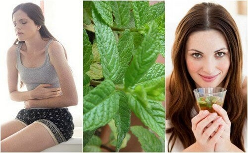 5 rimedi casalinghi a base di menta