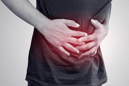 Piante carminative contro i gas intestinali